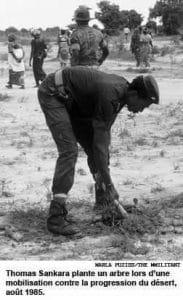 Sankara plante un arbre
