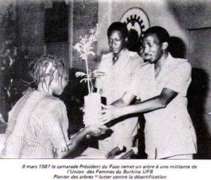 Sankara remet un arbre